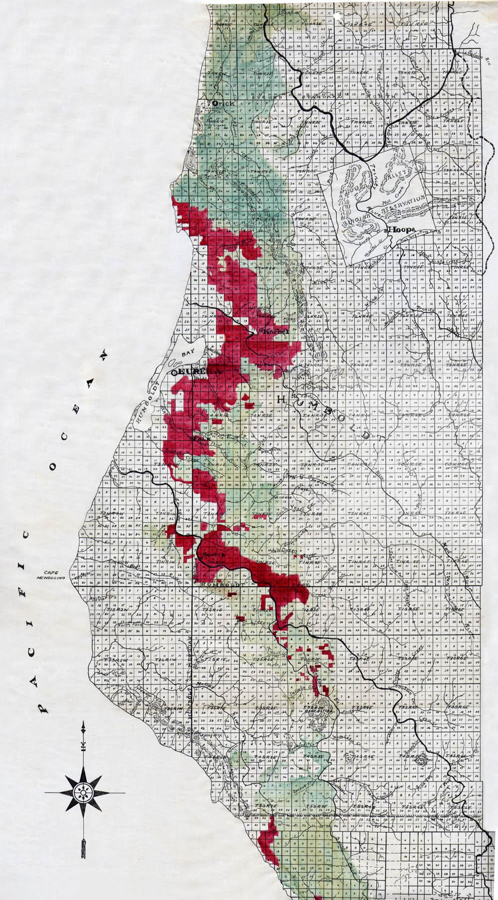 Coast Redwood Range And Biogeography